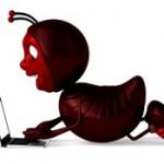 kiến chui ổ cứng