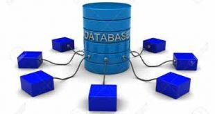 cơ sở dữ liệu máy chủ